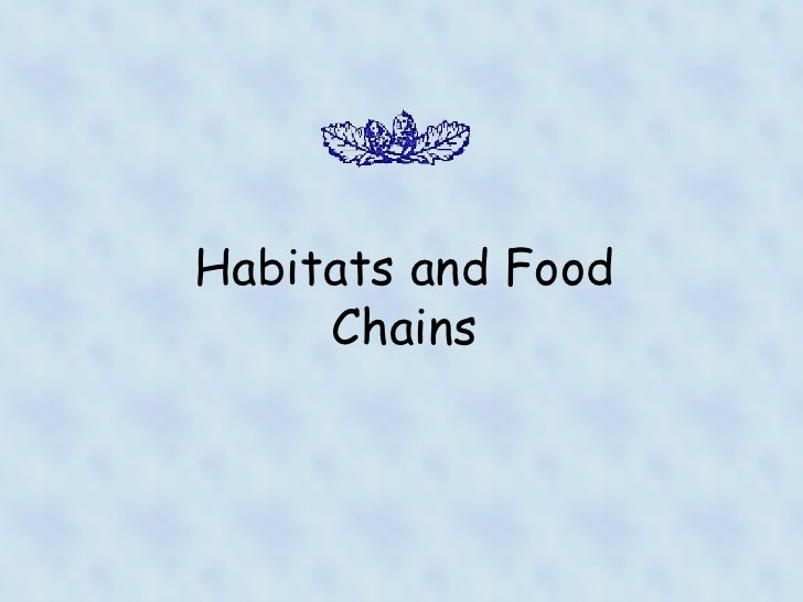 Habitats and foodchains