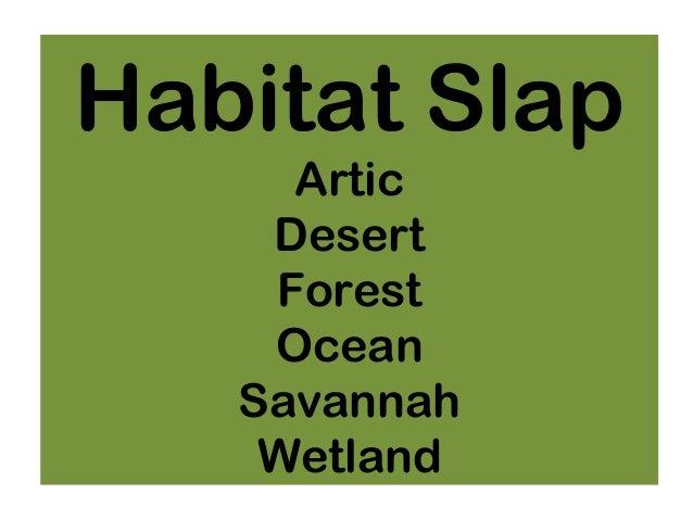 Habitat Slap Artic Desert Forest Ocean Savannah Wetland