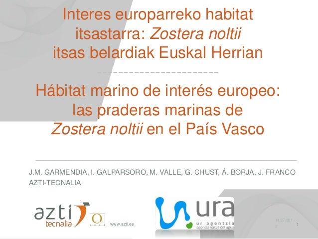 Interes europarreko habitat        itsastarra: Zostera noltii   itsas belardiak Euskal Herrian            ----------------...