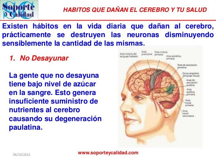 Habitos que dañan el cerebro y la salud