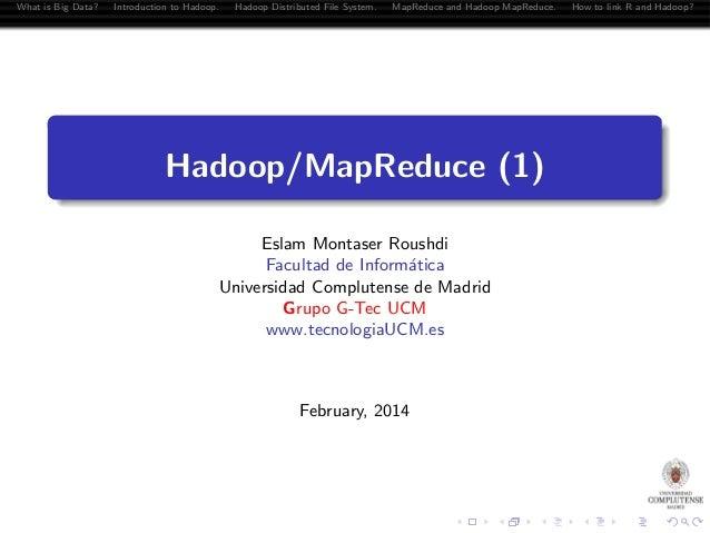Hadoop, MapReduce and R = RHadoop
