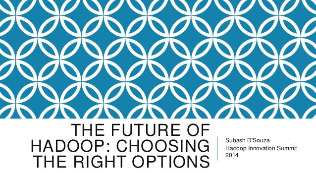 THE FUTURE OF HADOOP: CHOOSING THE RIGHT OPTIONS  Subash D'Souza Hadoop Innovation Summit 2014