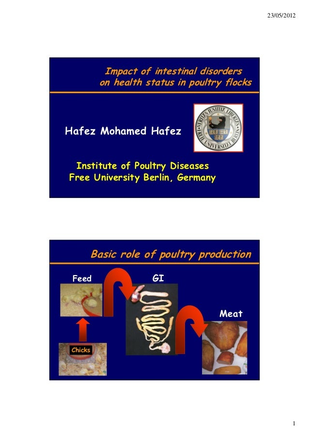 Impact of Intestinal disorders on health status in poultry flocks-Hafez Muenchen 2012