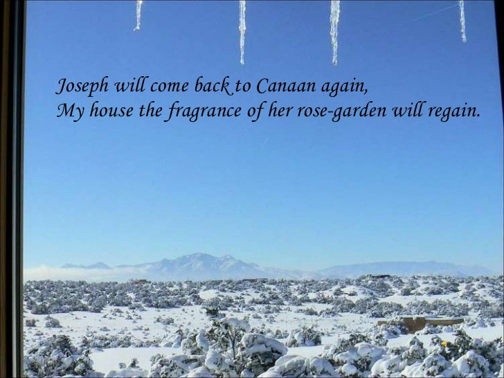 Joseph will come back to Canaan again, My house the fragrance of her rose-garden will regain.