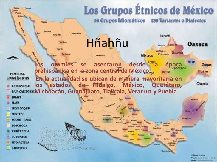 HñahñuLos otomíes se asentaron desde la épocaprehispánica en la zona central de México. En la actualidad se ubican de mane...