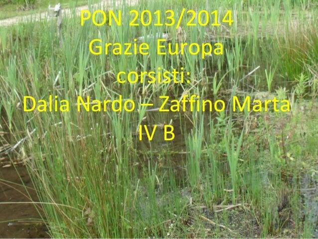 PON 2013/2014 Grazie Europa corsisti: Dalia Nardo – Zaffino Marta IV B