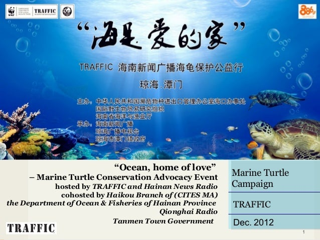 "PROPOSAL                           ""Ocean, home of love""       – Marine Turtle Conservation Advocacy Event                ..."
