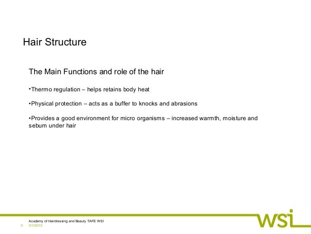 3/1/2013Academy of Hairdressing and Beauty TAFE WSI0Hair StructureThe Main Functions and role of the hair•Thermo regulatio...