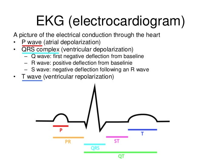 conduction system and relationship to ecg strips