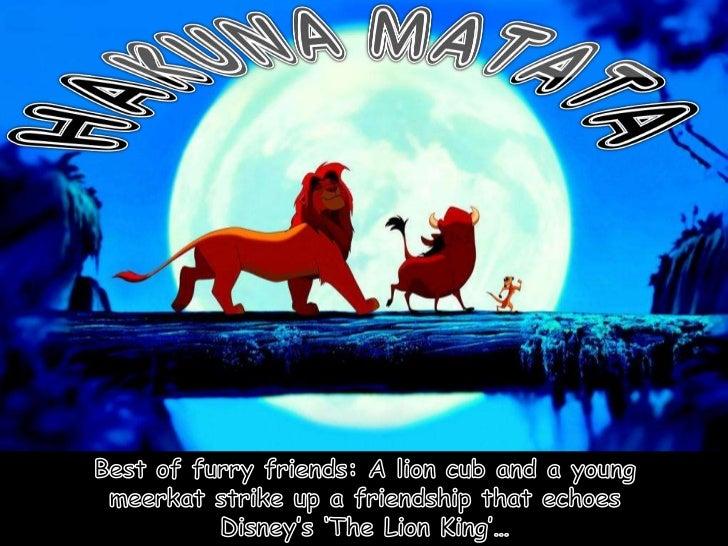 Hakuna Matata (nx power lite)
