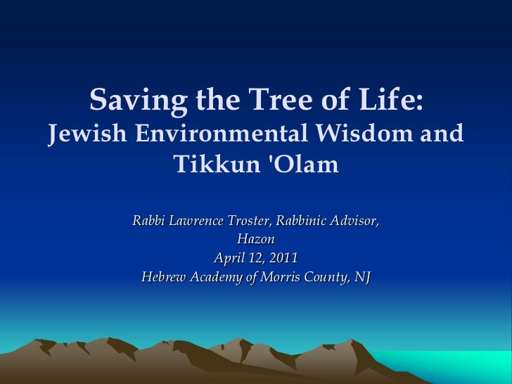 Rabbi Troster of Greenfaith on Consumption