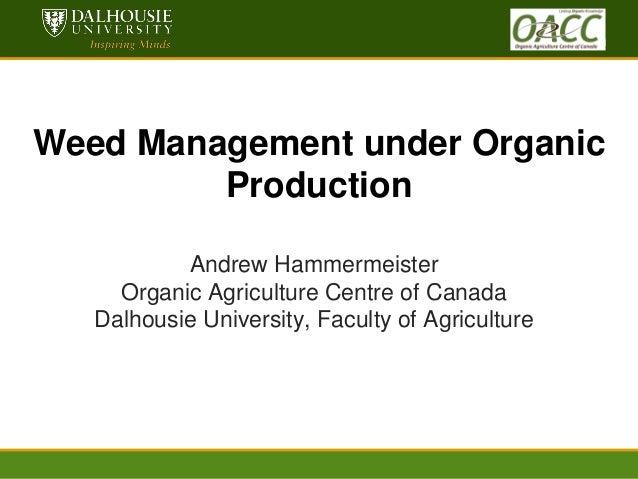 Hammermeister weed management