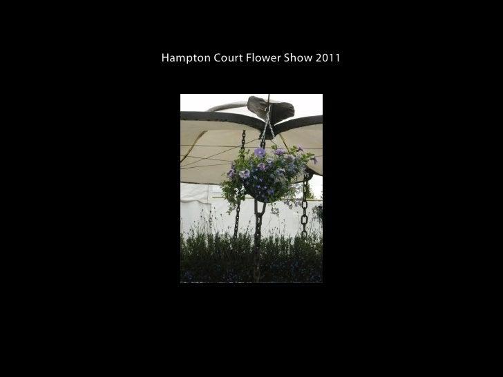 Hampton Court Flower Show 2011