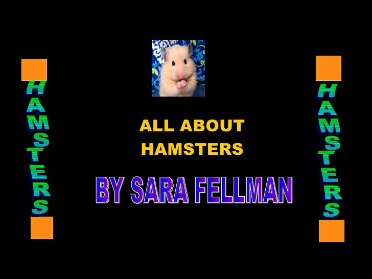 ALL ABOUT HAMSTERS BY SARA FELLMAN HAMSTERS HAMSTERS
