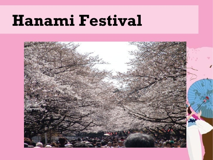 Hanami and Tanabata Festival