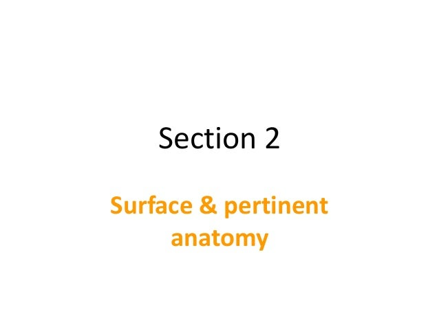 Section 2 Surface & pertinent anatomy