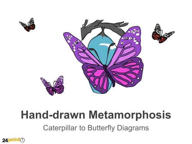 Hand-drawn Metamorphosis - PowerPoint Illustration