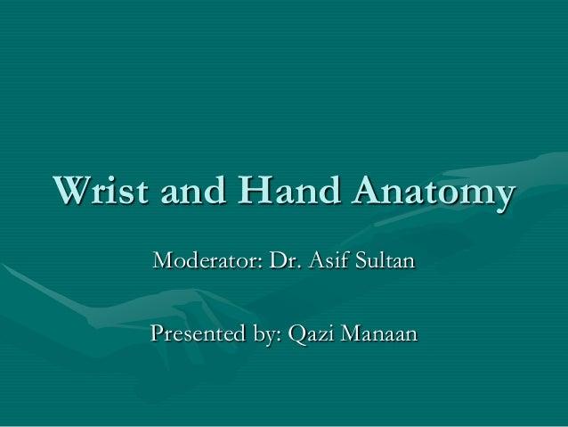 Hand anatomy new