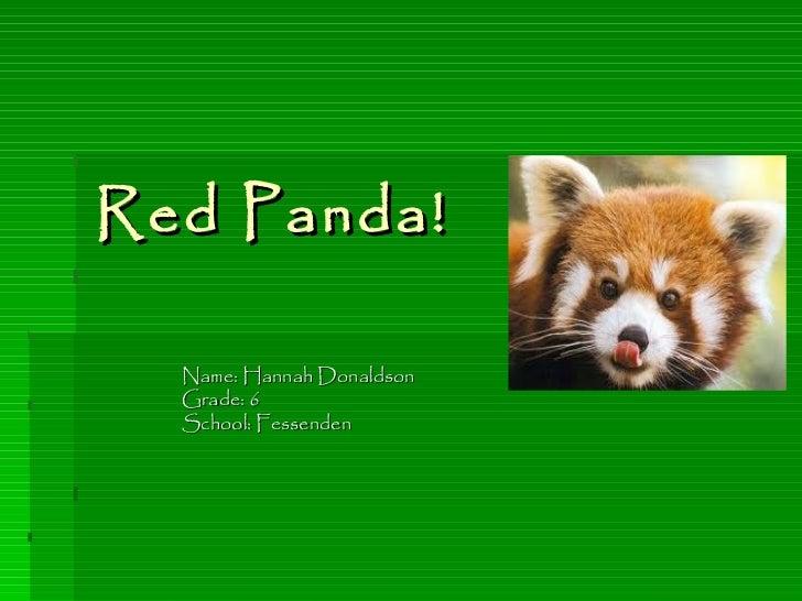 Red Panda! Name: Hannah Donaldson Grade: 6 School: Fessenden