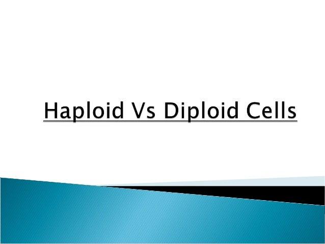 Haploid vs diploid cells