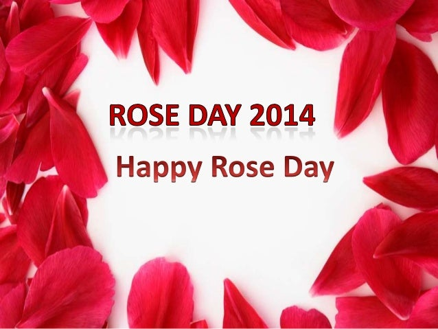 Happy Rose Day Images, Quotes, SMS in Hindi, Wallpaper Download