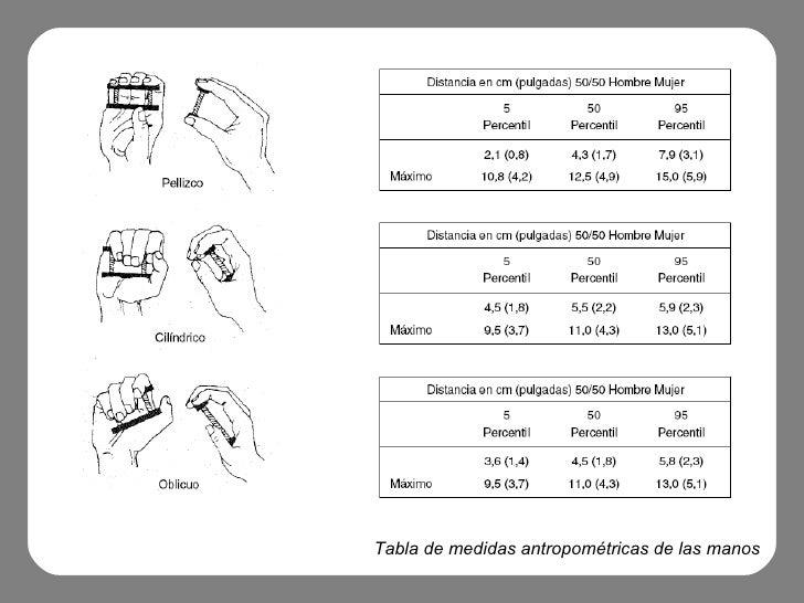 Hapticidad for Tabla de medidas antropometricas
