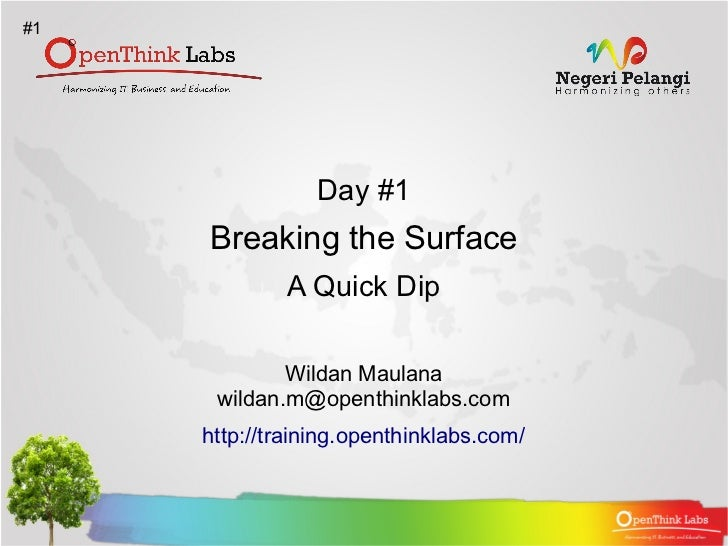 #1                 Day #1     Breaking the Surface             A Quick Dip             Wildan Maulana      wildan.m@openth...