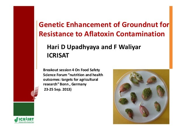Genetic Enhancement of Groundnut for Resistance to Aflatoxin Contamination Breakout session 4 On Food Safety Science Forum...