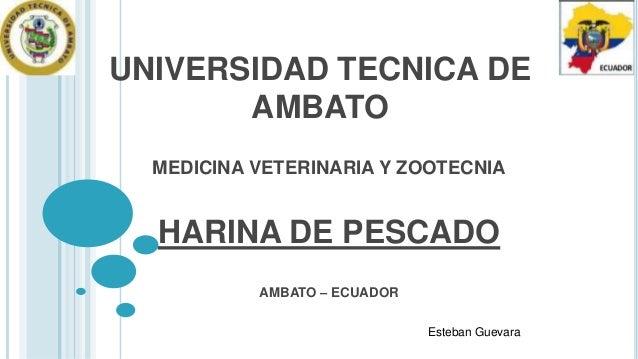 UNIVERSIDAD TECNICA DE AMBATO MEDICINA VETERINARIA Y ZOOTECNIA  HARINA DE PESCADO AMBATO – ECUADOR Esteban Guevara