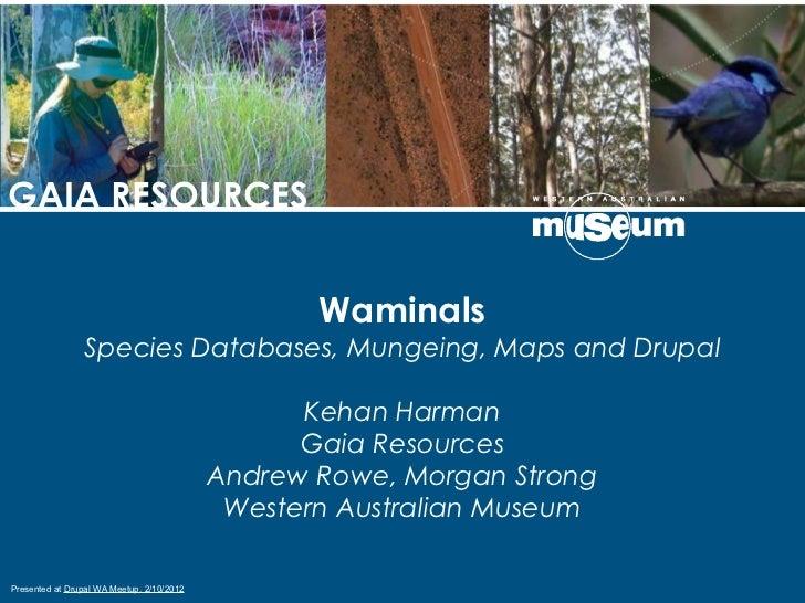 GAIA RESOURCES                                                  Waminals                Species Databases, Mungeing, Maps ...