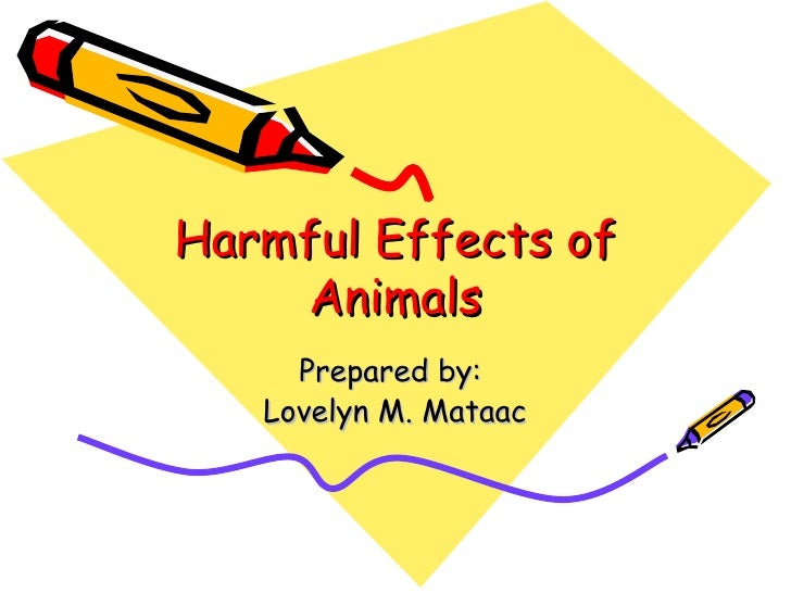 Harmful Effects of Animals Prepared by:  Lovelyn M. Mataac