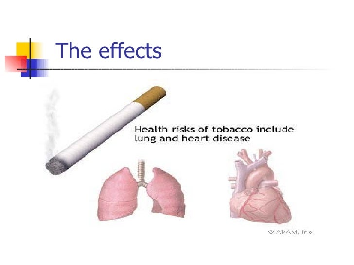 the ill effects of smoking Its my biology project on cigarette smoking and its ill effects- authorstream presentation.