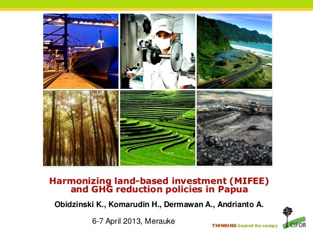 THINKING beyond the canopy Harmonizing land-based investment (MIFEE) and GHG reduction policies in Papua 6-7 April 2013, M...