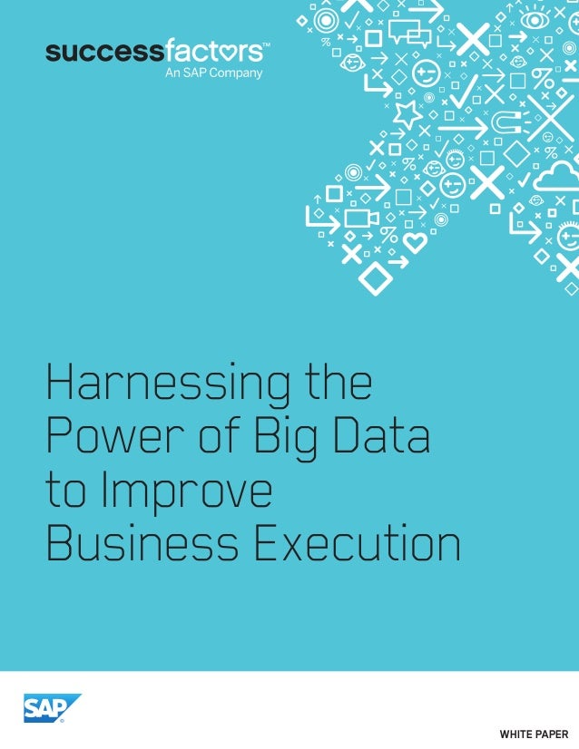Harnessing the Power of Big Data to Improve Business Execution WHITE PAPER