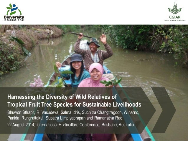 Harnessing the Diversity of Wild Relatives of  Tropical Fruit Tree Species for Sustainable Livelihoods  Bhuwon Sthapit, R....