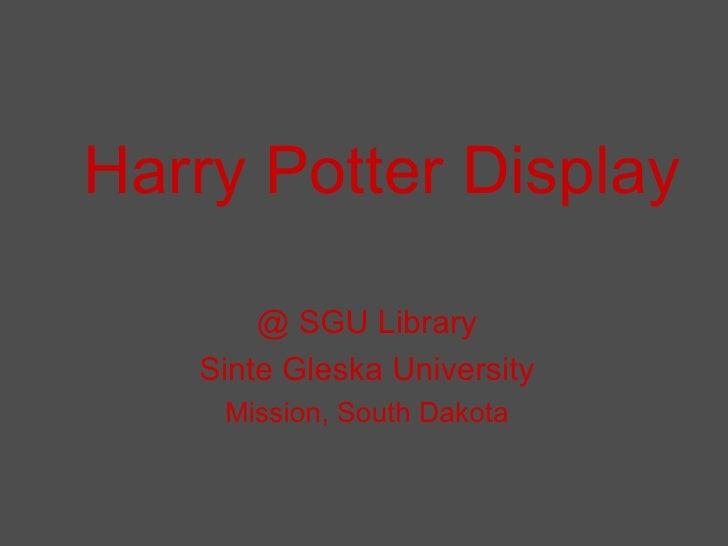 Harry Potter Display