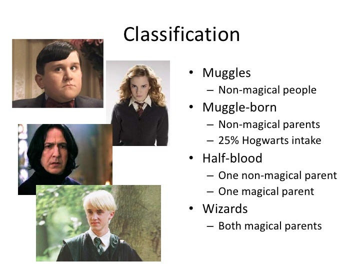 Harry Potter: Stages of Genocide