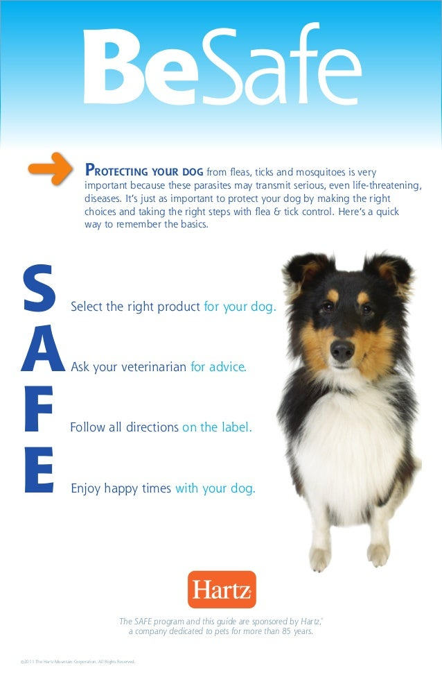 BeSafe  ➜                             Protecting your dog from fleas, ticks and mosquitoes is very                        ...
