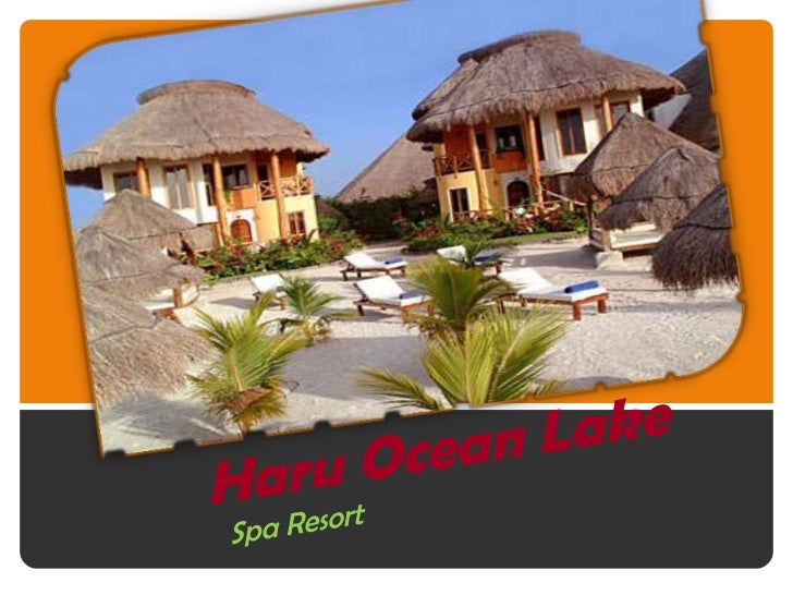 Proposal     We, the hotel company of the Embassy, we askpermission for the construction of a resort in thecountry Haru. H...