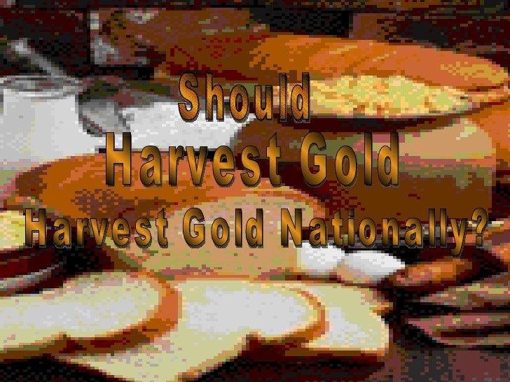 Should Harvest Gold  Harvest Gold Nationally?