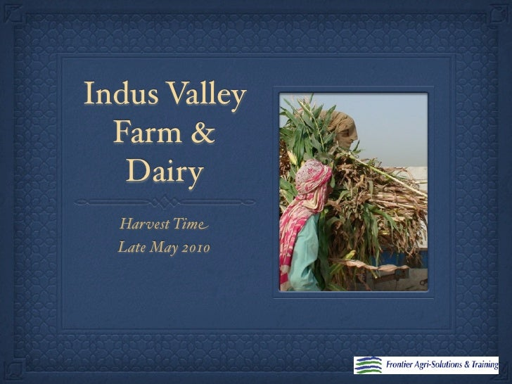 Indus Valley   Farm &    Dairy   Harvest Time   Late May 2010