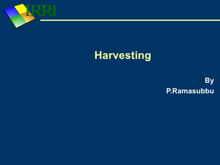 Harvesting                        By              P.Ramasubbu