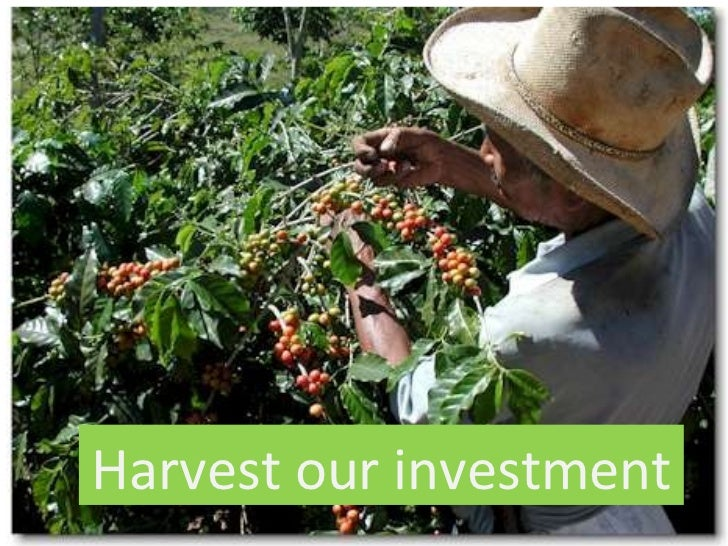Harvest our investment