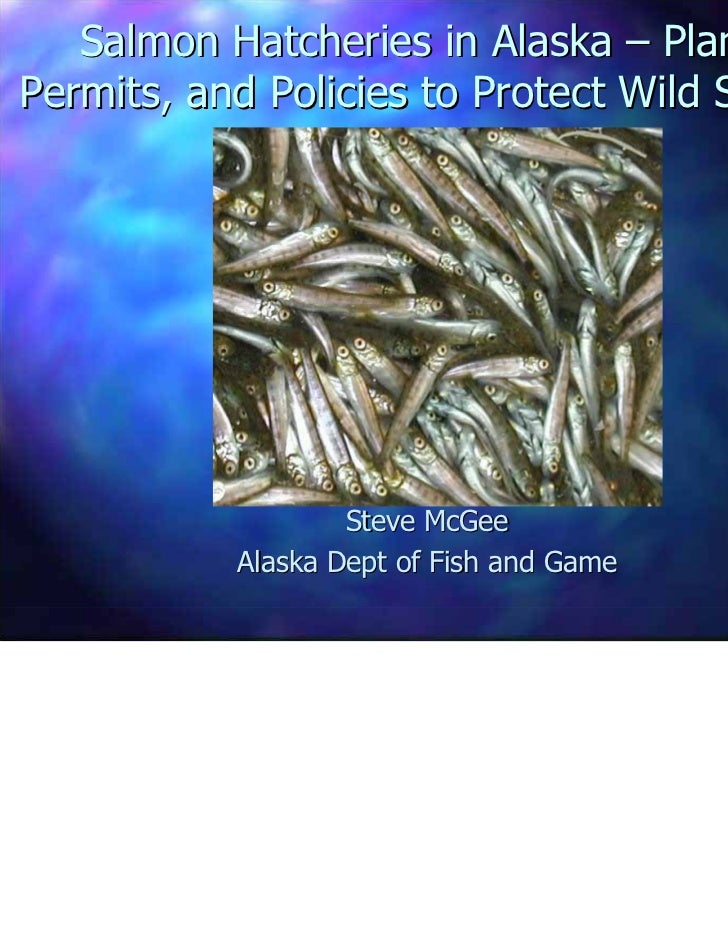 Salmon Hatcheries in Alaska – Plans,Permits, and Policies to Protect Wild Stocks                   Steve McGee           A...