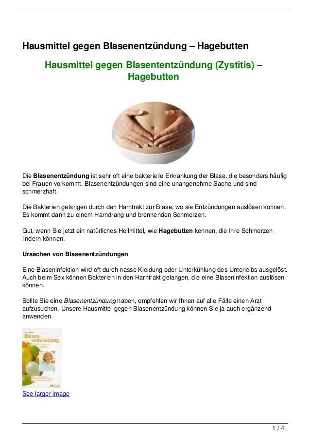 Hausmittel gegen Blasenentzündung – Hagebutten        Hausmittel gegen Blasententzündung (Zystitis) –                     ...