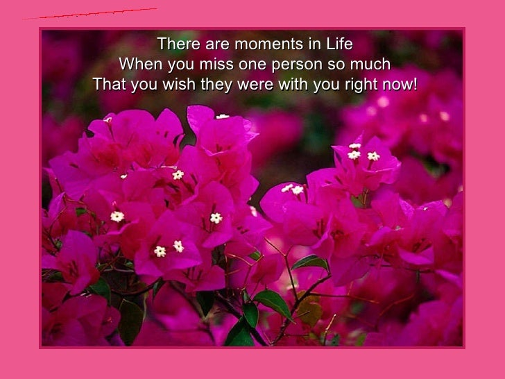 There are moments in Life When you miss one person so much That you wish they were with you right now! www.freewebs.com/be...