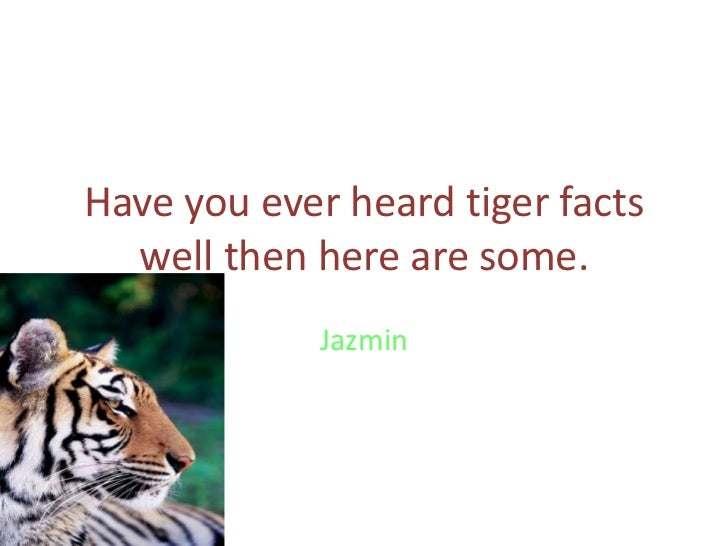 Have you ever heard tiger facts well then here are some.<br />Jazmin<br />