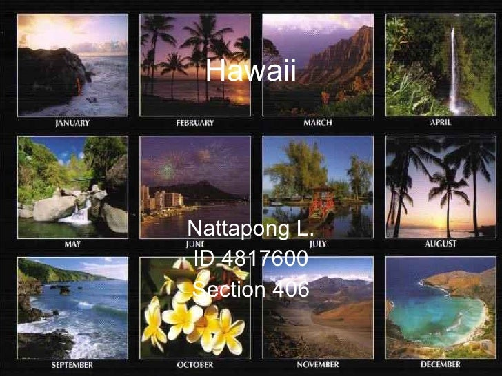 Hawaii Nattapong L. ID 4817600 Section 406