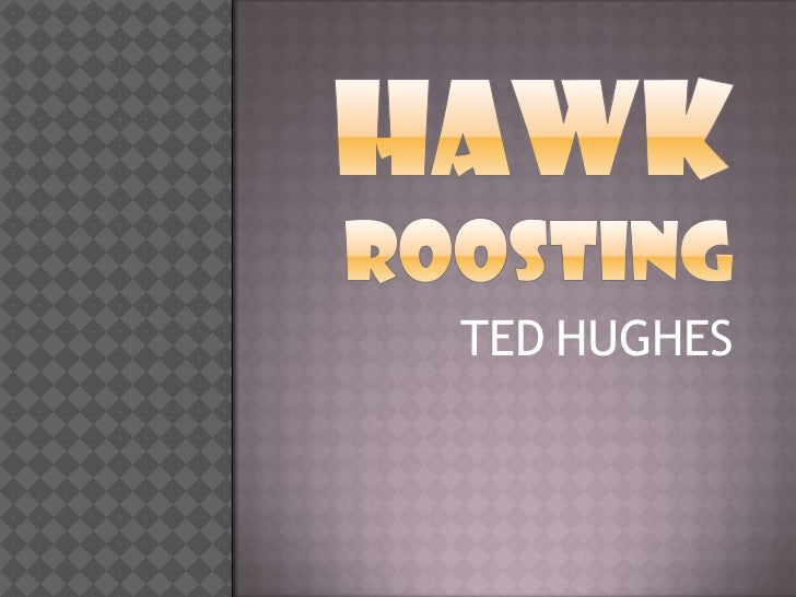 conflicting perspectives ted hughes free