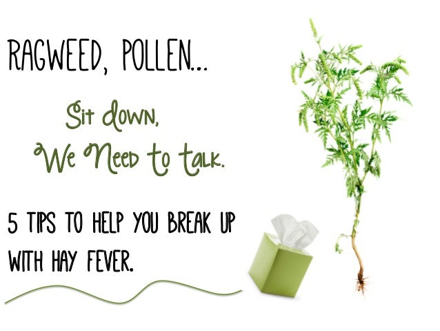 Ragweed, Pollen… Sit Down, We Need To Talk. 5 tips to help you break up with Hay fever.